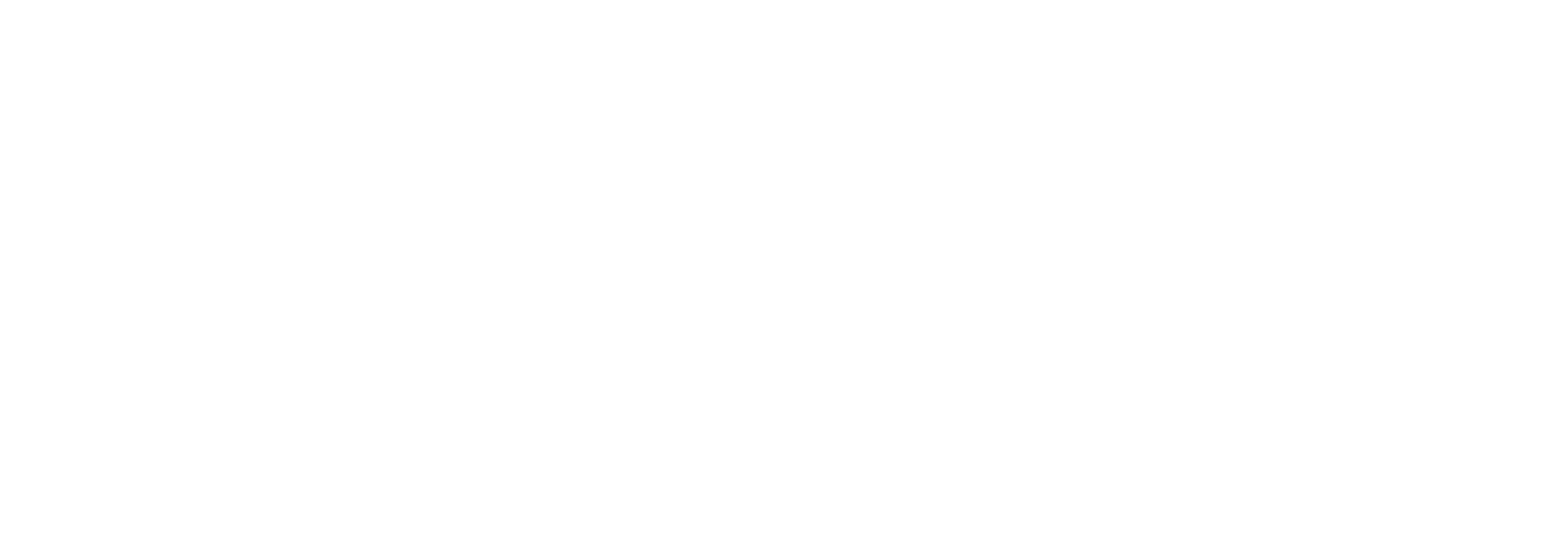 Davies Foundation
